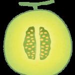 cut_fruit_melon